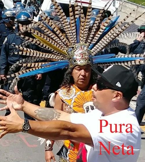 Frisco Resistance Pura Neta